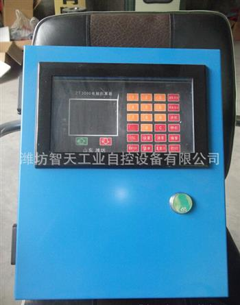 ICS14-1200电子皮带秤